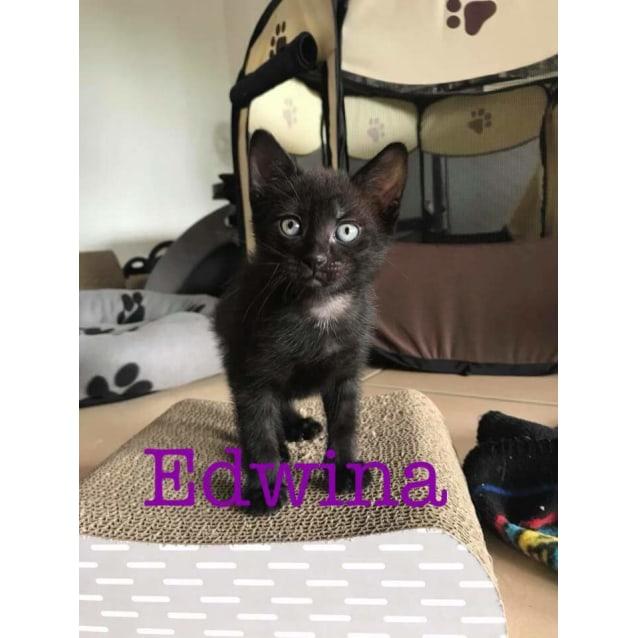Photo of Edwina