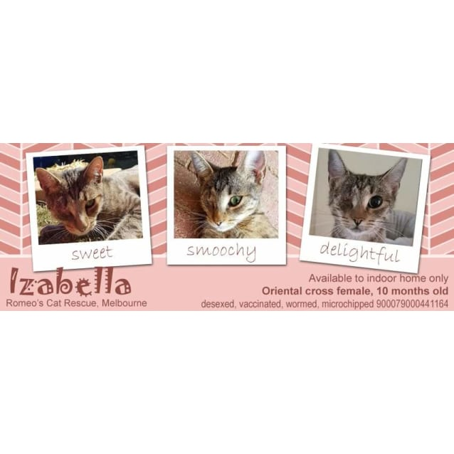 Photo of Izabella [Bella]