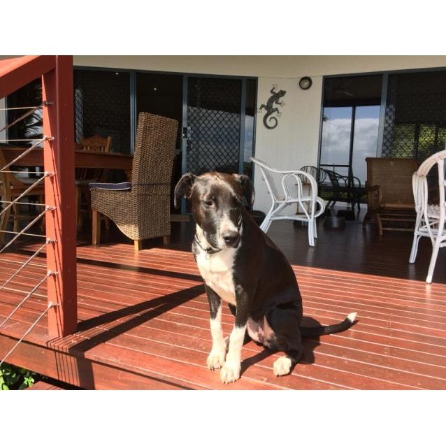 Photo of Kaya