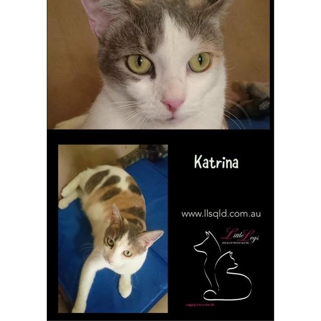 Photo of Katrina