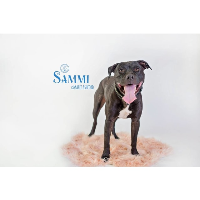Photo of Sammi