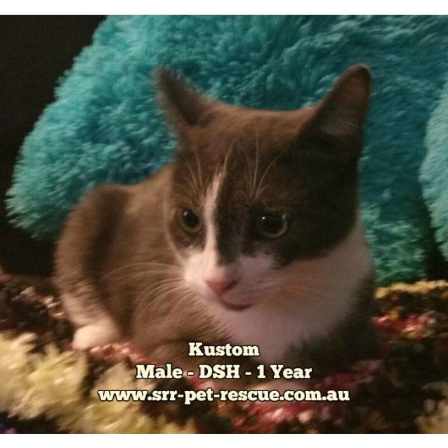 Photo of Kustom