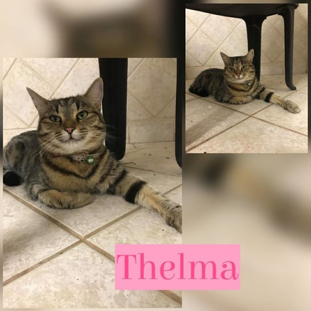 Photo of Thelma