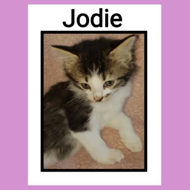 Photo of Jodie