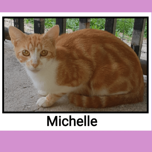 Photo of Michelle