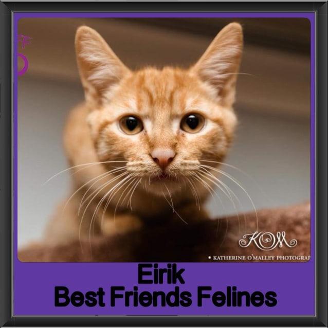Photo of Eirik