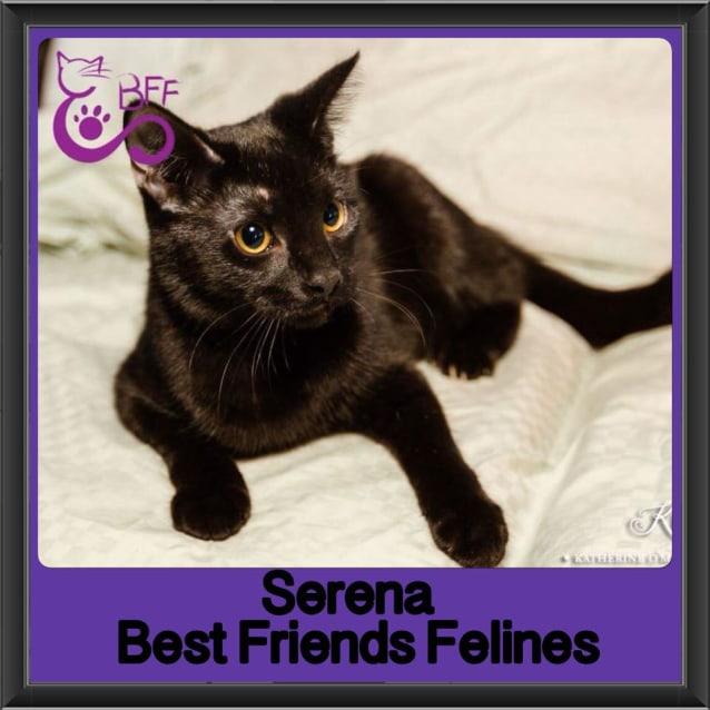 Photo of Serena