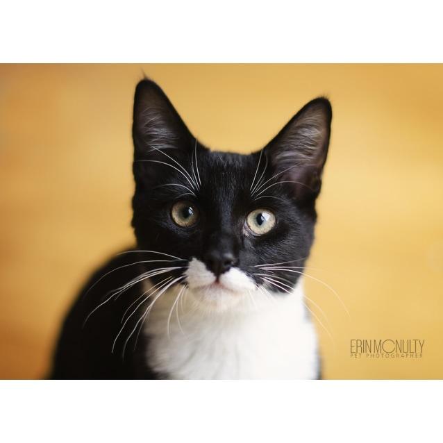 Photo of Jaco