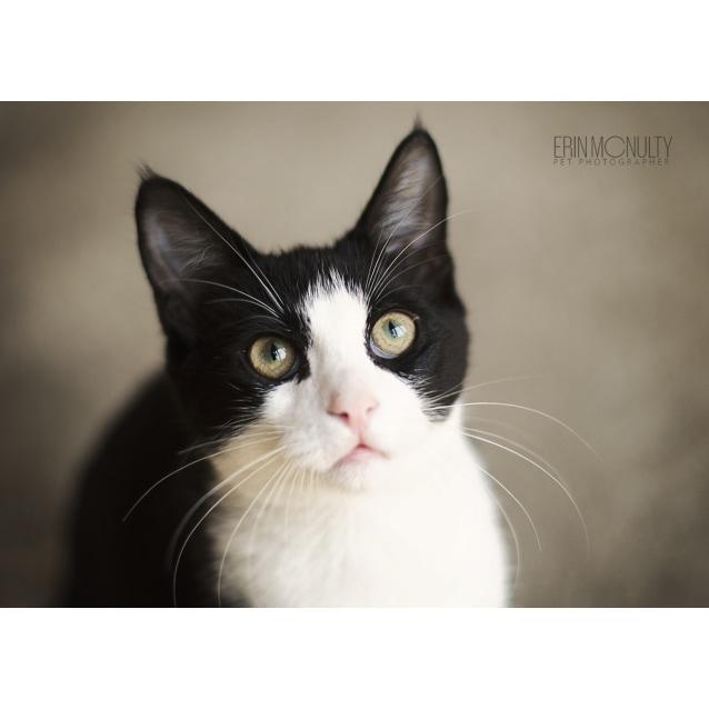 Photo of Jimi