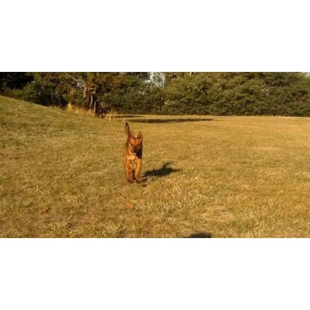 Photo of Floyd