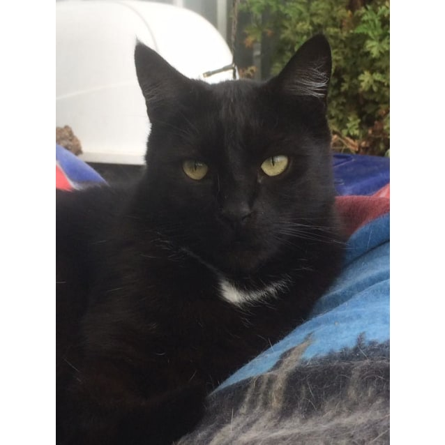 Photo of Edgar