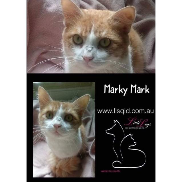 Photo of Marky Mark