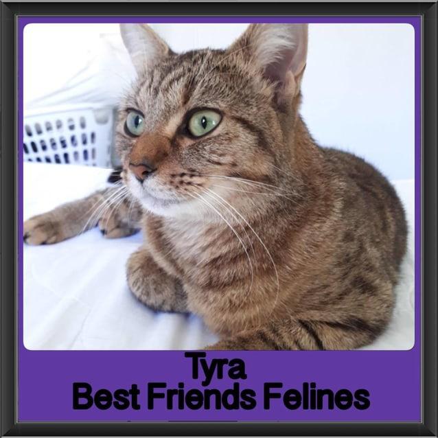 Photo of Tyra