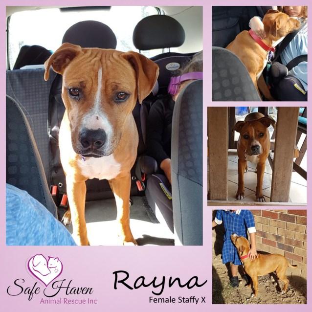 Photo of Rayna