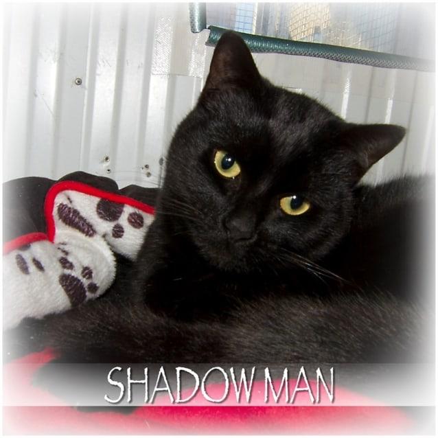 Photo of Shadow Man