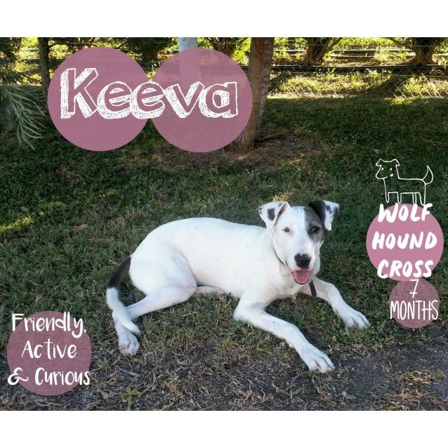 Photo of Keeva