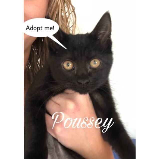 Photo of Poussey