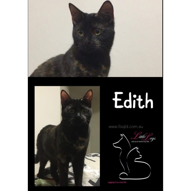 Photo of Edith