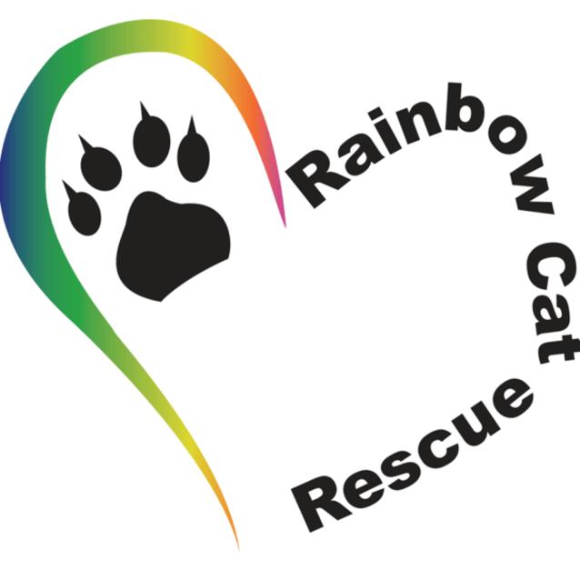 Photo of Dafney ~Rainbow Cat Rescue~