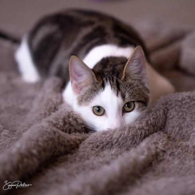 Photo of Jack