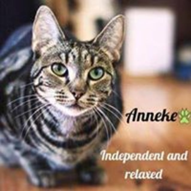 Photo of Annie (Anneke)