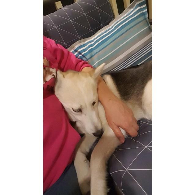 Photo of Ayla