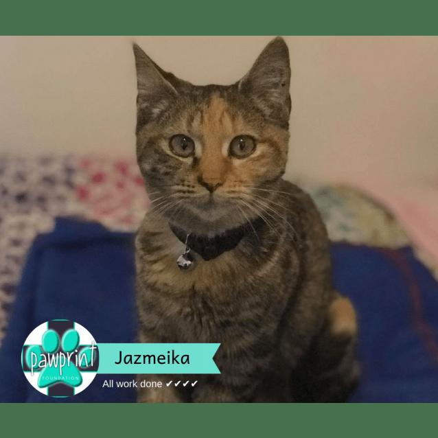 Photo of Jazmeika