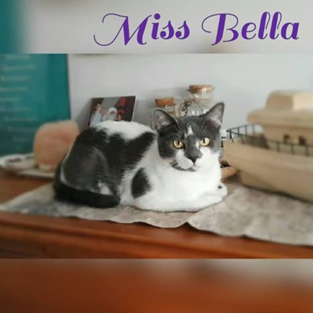 Photo of Miss Bella