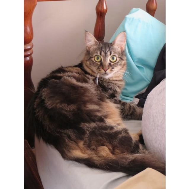 Photo of Della