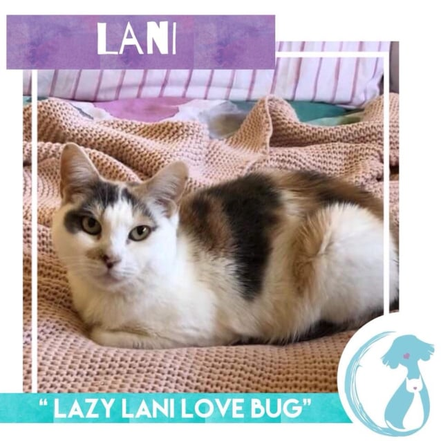 Photo of Lani