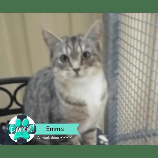 Photo of Emma Lola