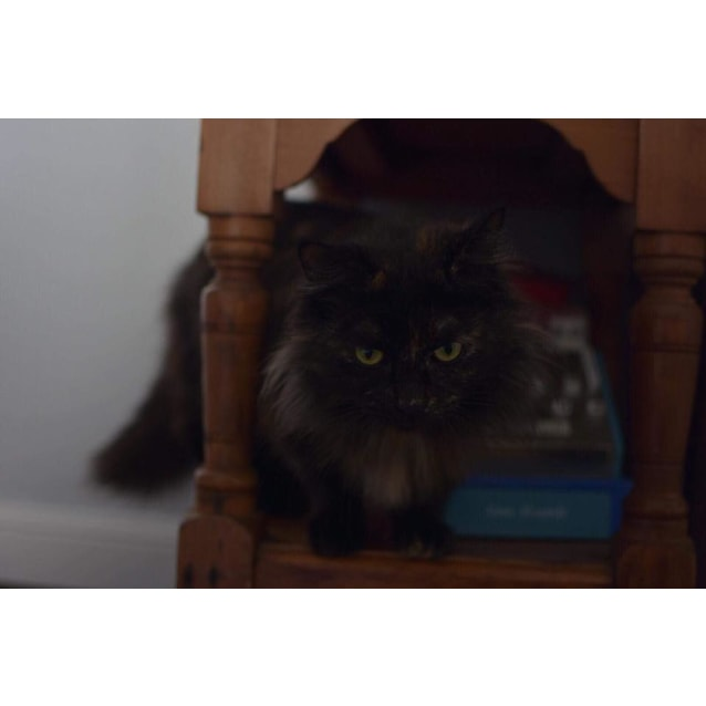 Photo of Helena