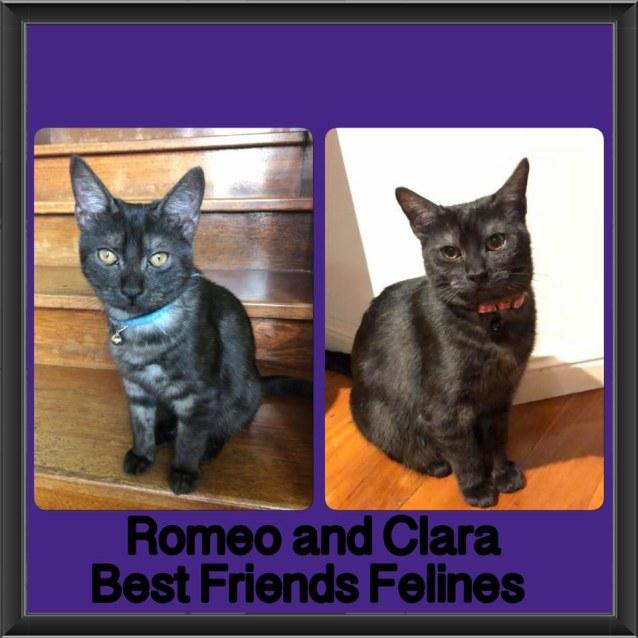 Photo of Romeo And Clara