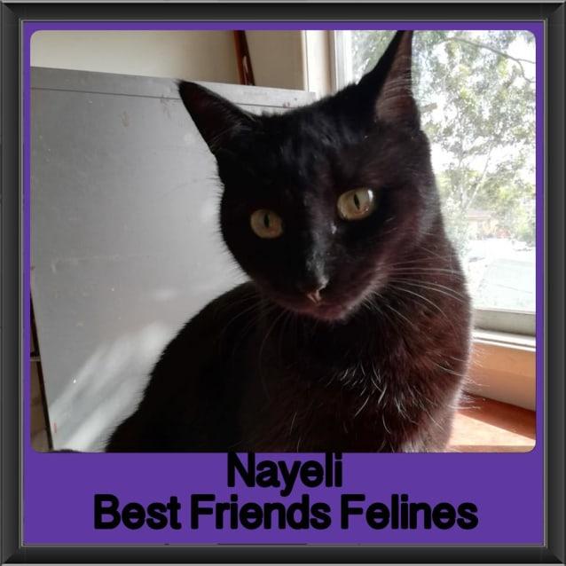 Photo of Nayeli