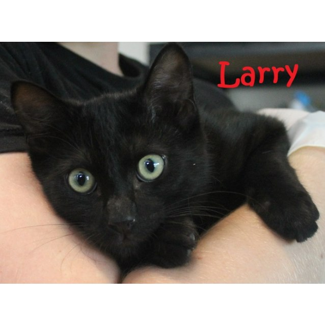 Photo of Larry