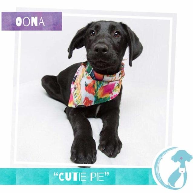 Photo of Oona