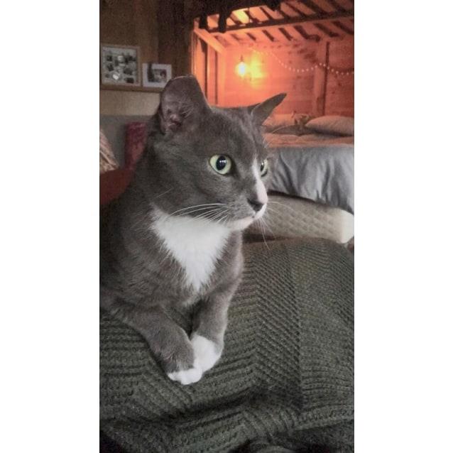 Photo of Lou Lou