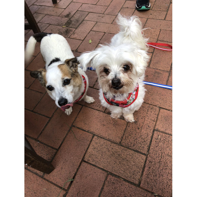 Photo of Max And Maddie