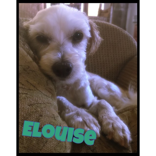 Photo of Elouise
