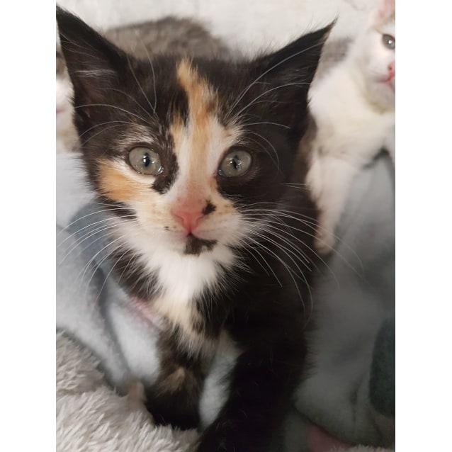 Photo of Winifred