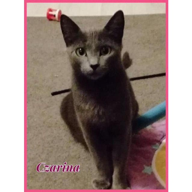 Photo of Czarina