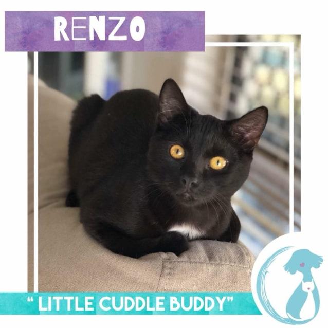 Photo of Renzo