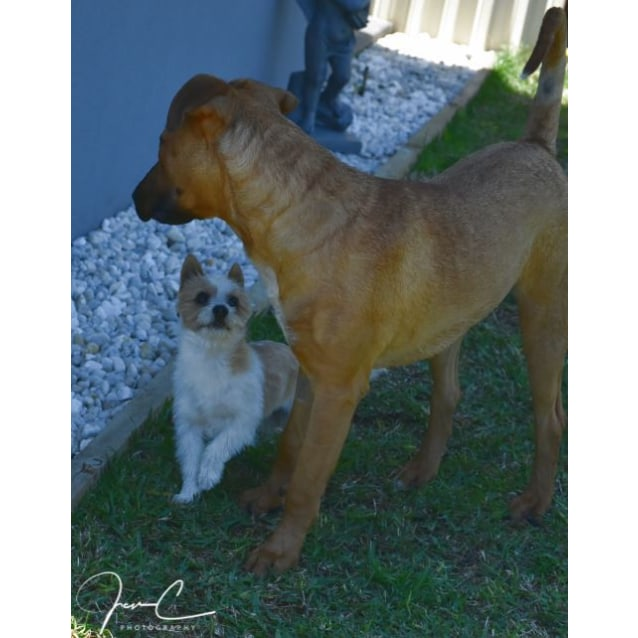 Photo of Freddy & Wilma ** Special Is An Understatement **