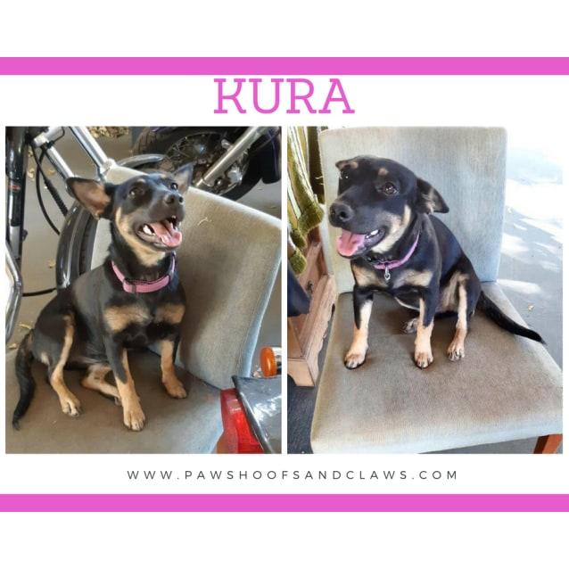 Photo of Kura