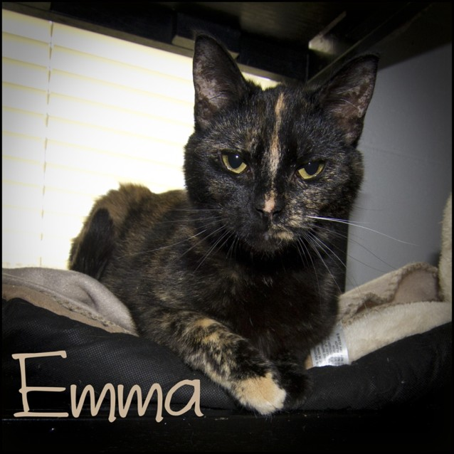 Photo of Emma