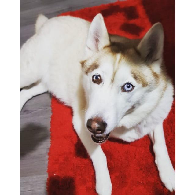 Photo of Myah