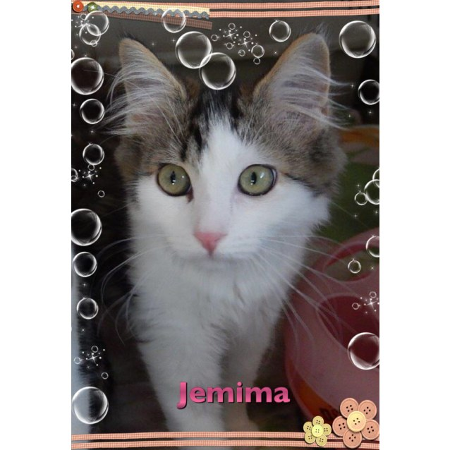 Photo of Jemima