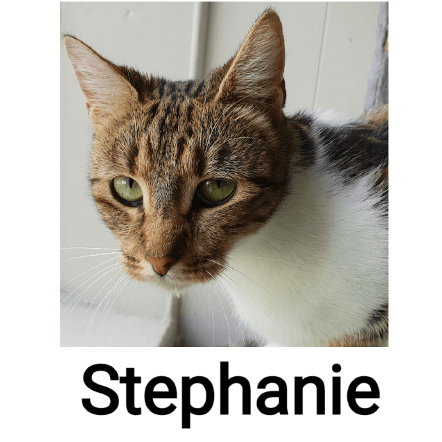 Photo of Stephanie