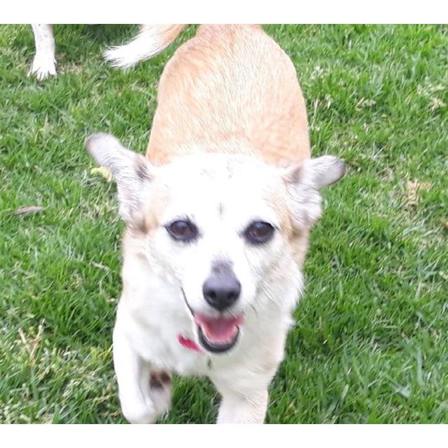 Photo of Kody