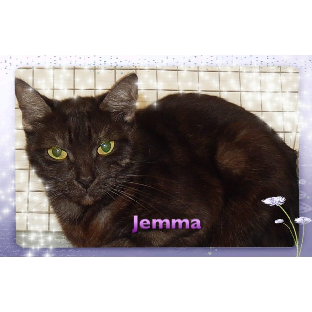 Photo of Jemma